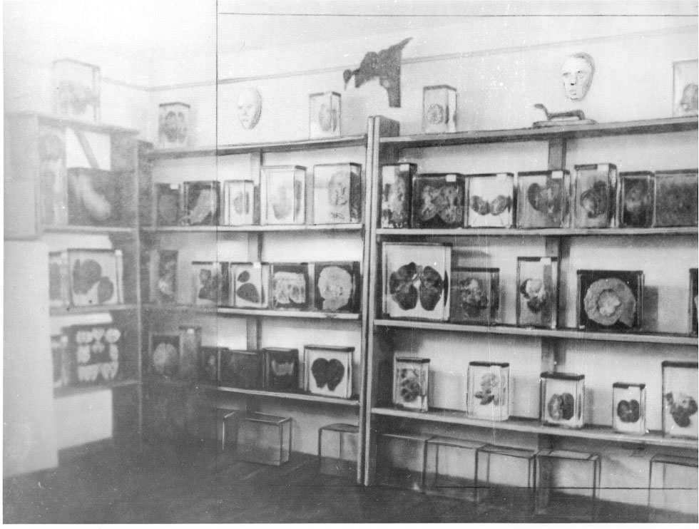 """Pathological Collection"", photographed between mid-1941 and 1945. (photo credits: Mauthausen Memorial / Collections)"